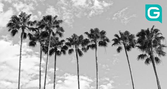 Auslandsaufenthalt in Florida